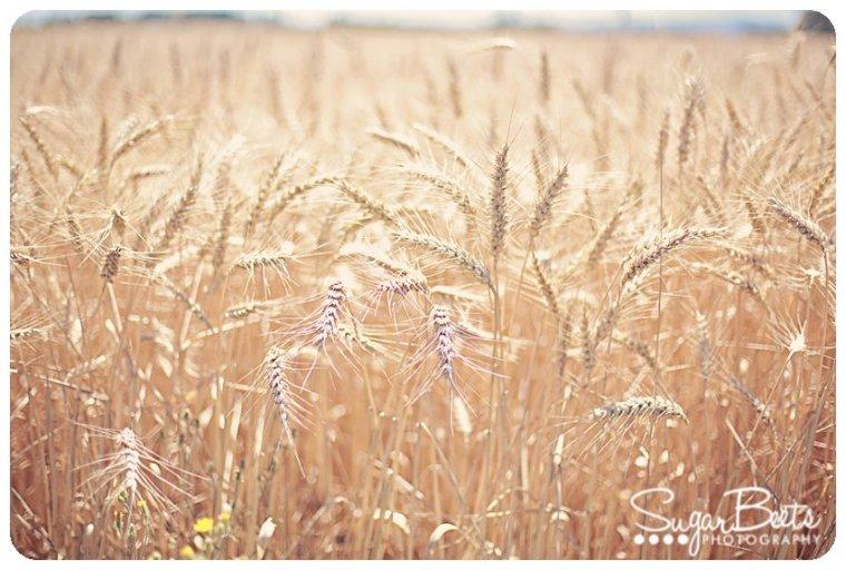PrairieGirlsBlog_0023