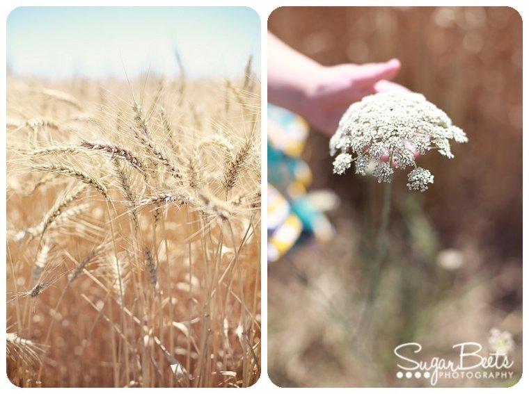 PrairieGirlsBlog_0017